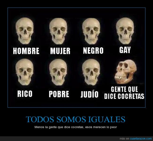 calavera,cocretas,rae,skull