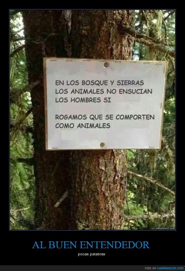 árbol,aviso,cartel,letrero