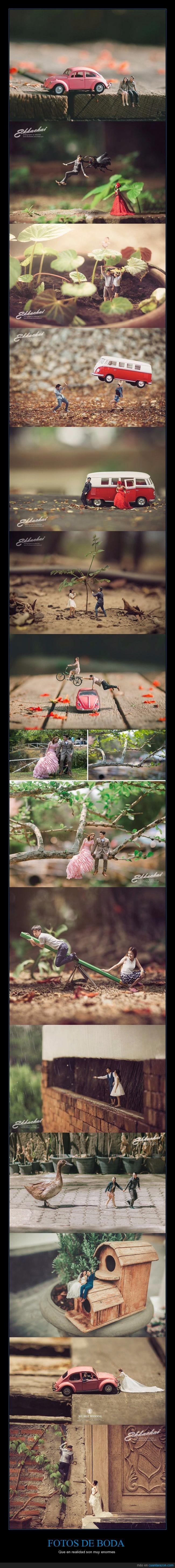 boda,fotografías,matrimonio