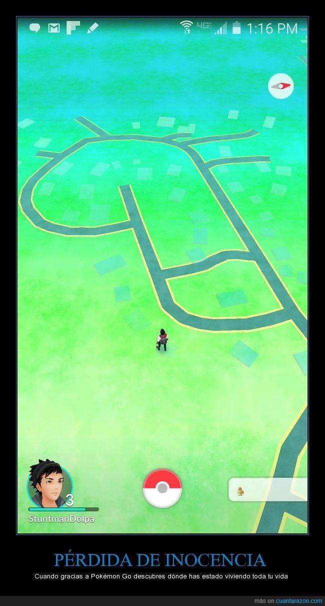 casa,forma,mapa,pokémon go
