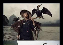 Enlace a Pescar con la ayuda de aves