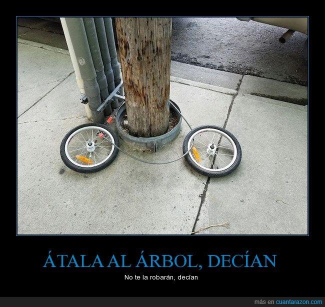 al,arbol,átala,bici,el modo seguro para atar la bicicleta,seguridad,wilson
