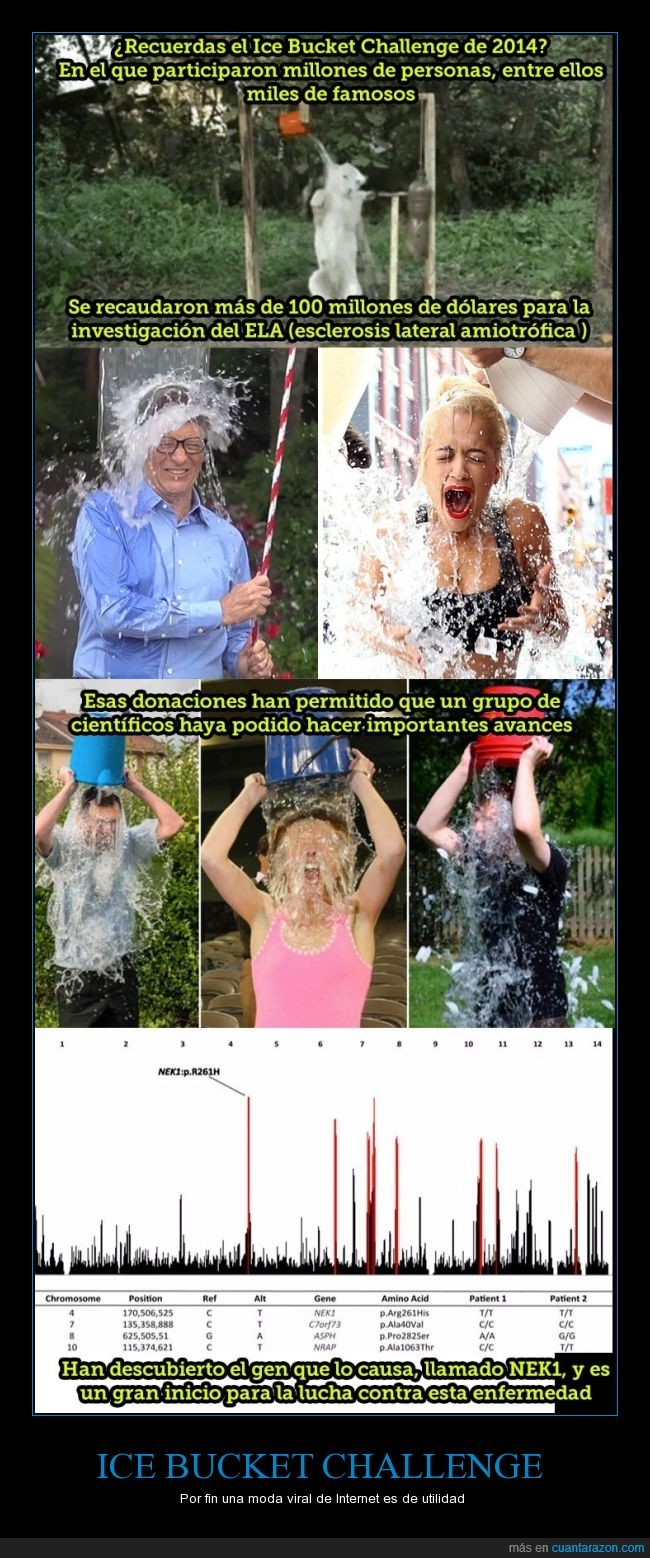 2014,ela,enfermedad,ice bucket challenge