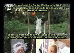 Enlace a ¿Te acuerdas del reto del Ice Bucket Challenge? ¡HA DADO RESULTADOS!