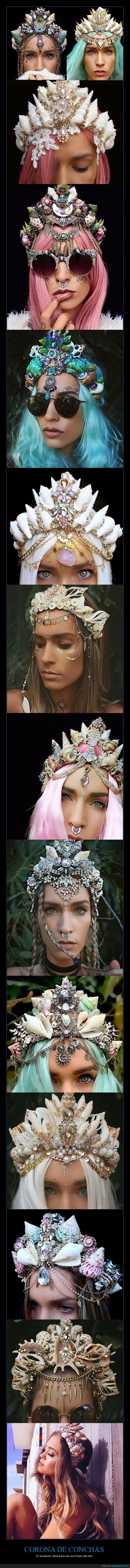 cabeza,conchas,coronas,ornamento