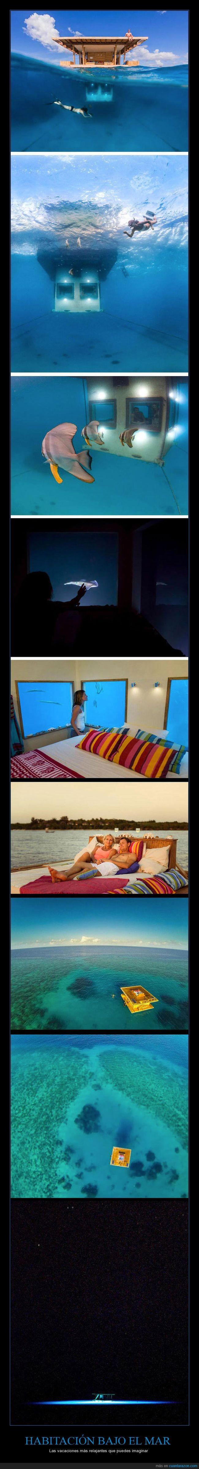 agua,habitación,hotel,mar