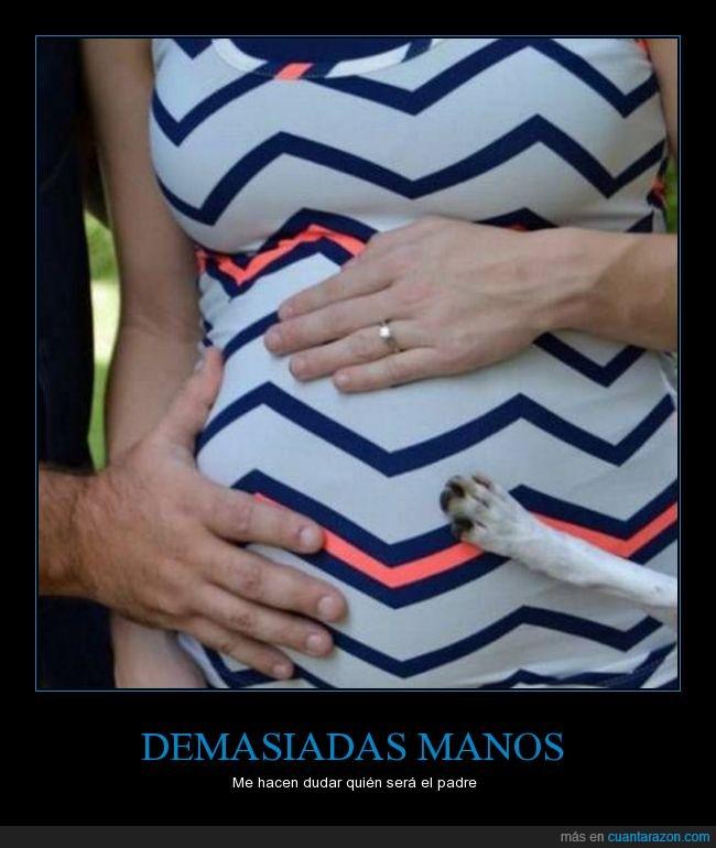 barriga,embarazada,manos,zarpa