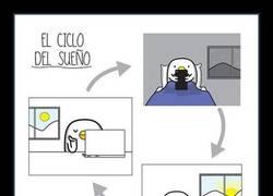 Enlace a EL CICLO DEL SUEÑO