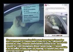 Enlace a Dejan a su perro encerrado en el coche con un gracioso mensaje e Internet los trollean