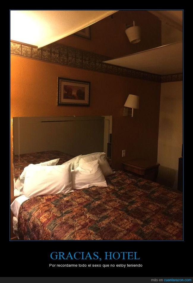 cuánta razón! / gracias, hotel