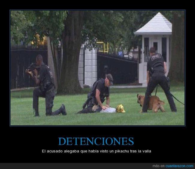 detenido,pikachu,pokémon go,policía