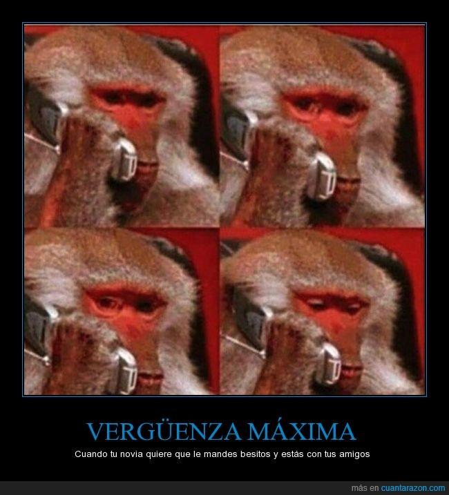 mono,novia,telefono