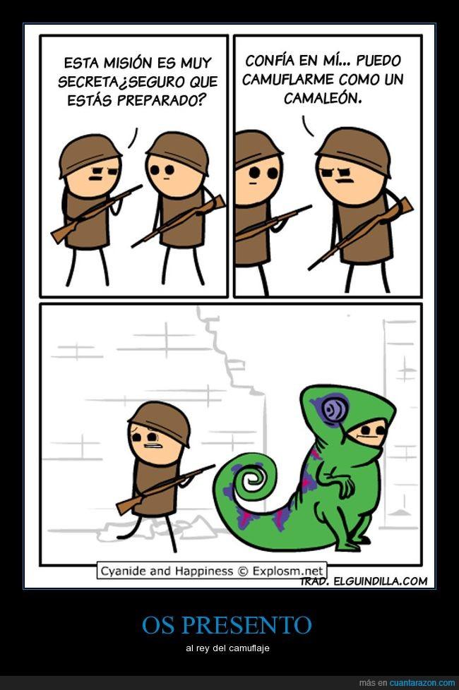 absurder,camaleón,camuflaje,mierder