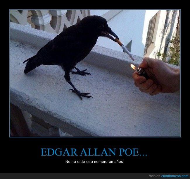 cigarro,cuervo,edgar allan poe,fumar