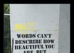 Enlace a Las palabras no pueden describir cuan bonita eres. Pero los números sí