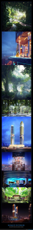 bosque,dubai,hotel,rascacielos