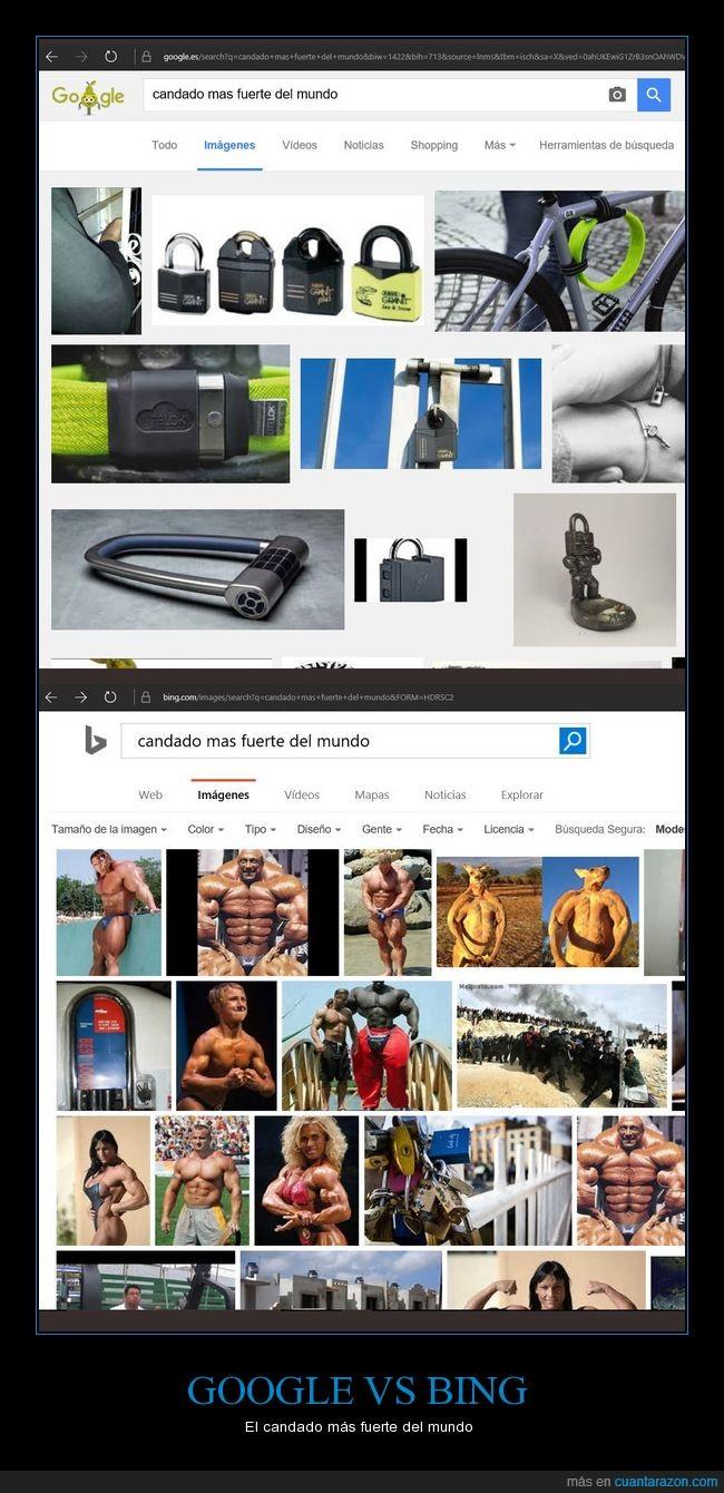 buscadores,candado,el algoritmo de Bing da miedo,google vs bing,WTF