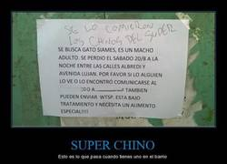 Enlace a SUPER CHINO