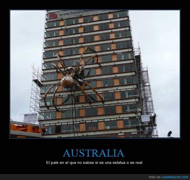 animal,araña,Australia,edificio,escultura