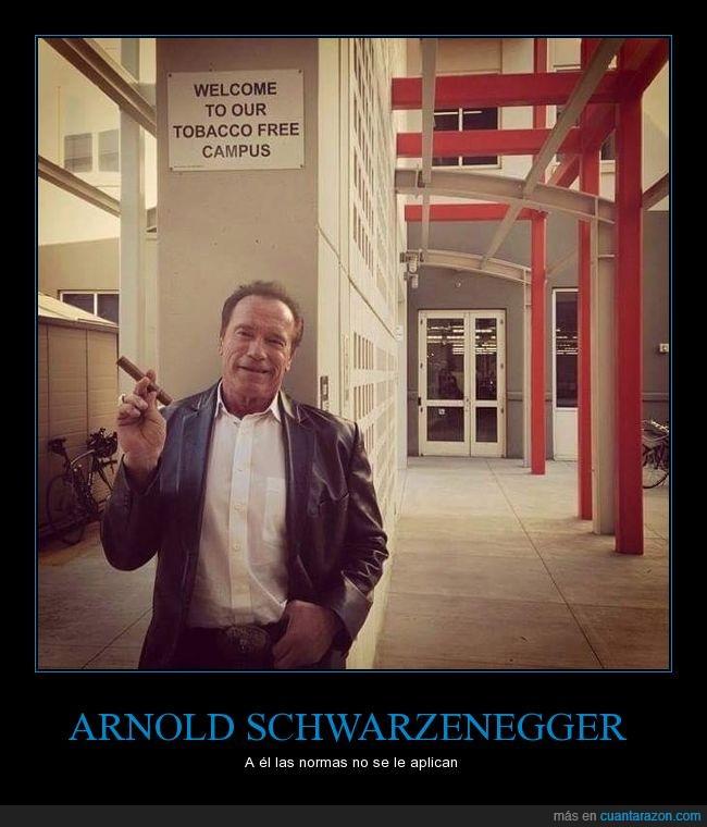 Arnold Schwarzenegger,campus,fumar,pasar,puro,tabaco