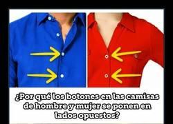 Enlace a Por esto los botones en las camisas de hombre y mujer se ponen en lados opuestos