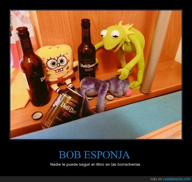 alcohol,beber,bob esponja,coco,gustavo