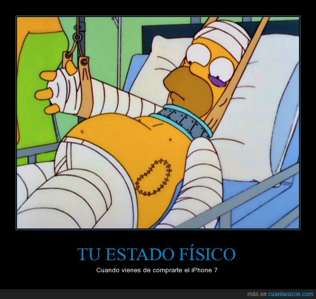 apple iphone 7,caro,homer simpson,riñón