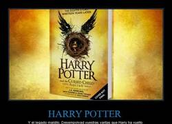Enlace a ¡Harry Potter ha vuelto!