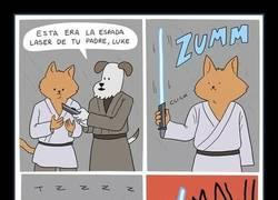 Enlace a Tienes que seguir la senda Jedi