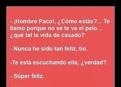 Enlace a El feliz matrimonio de Paco resumido en 5 frases
