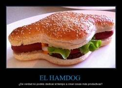 Enlace a ¿Revolución en la comida rápida? Un australiano crea el 'Hamdog', un mix entre perrito y hamburguesa