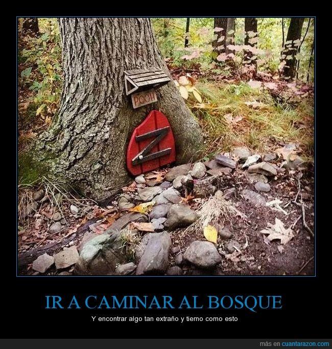 arbol,bosque,casa,winnie pooh