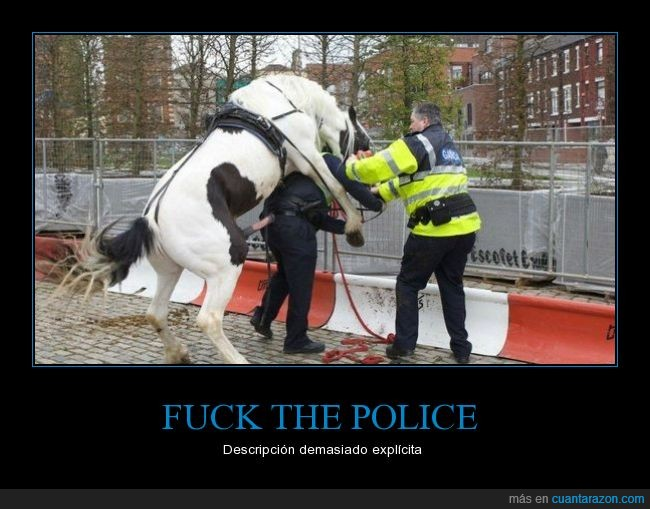 caballo,police,policia,wtf