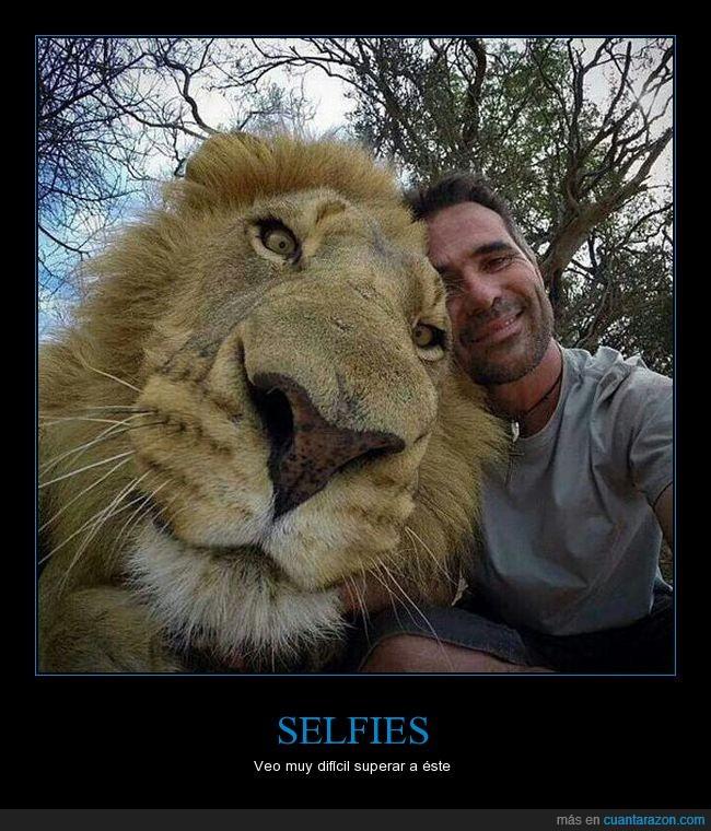 foto,leon,selfies,zoo