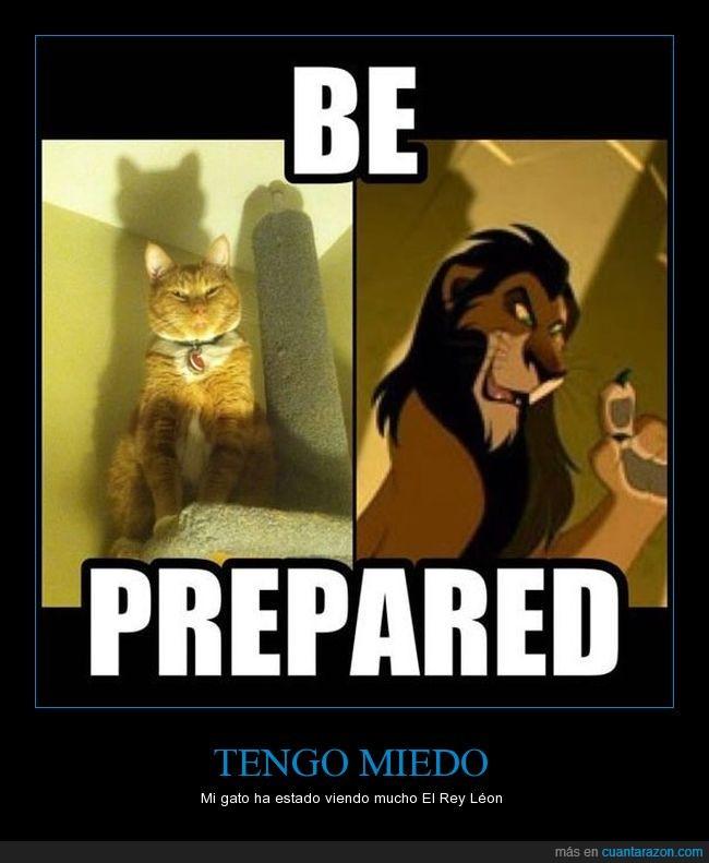 el rey leon,miedo,pose,scar,tenebroso