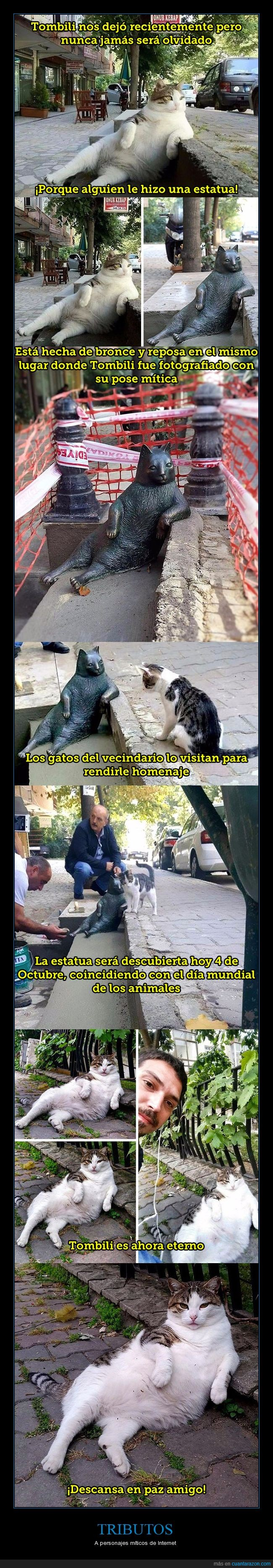 Estambul,estatua,gato,homenaje,tombili,tributo