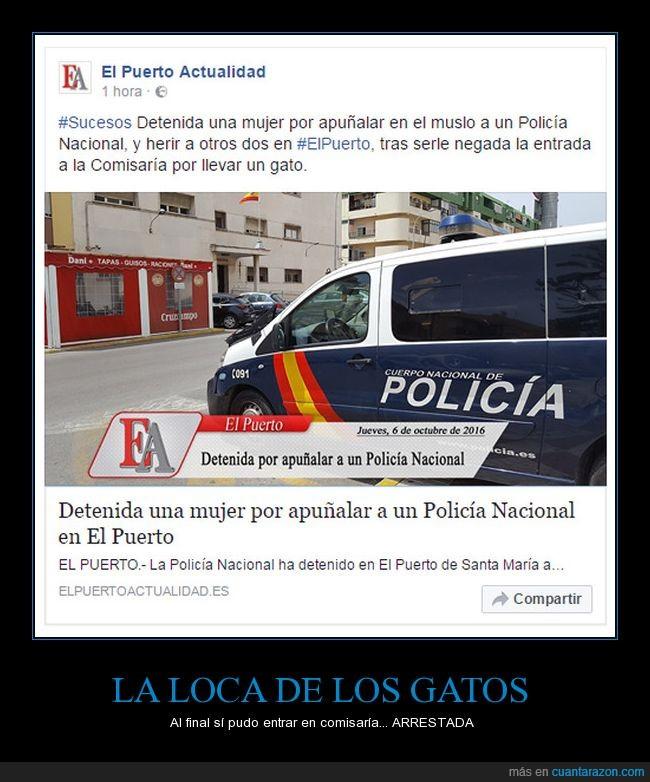arrestada,comisaria,es en mi ciudad,gato,gatos,la gente está fatal de la cabeza,loca,mujer,policia,tengo miedo