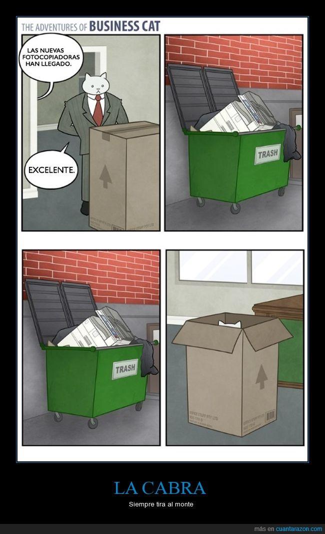 basuras,cajas,gato empresario,impresoras