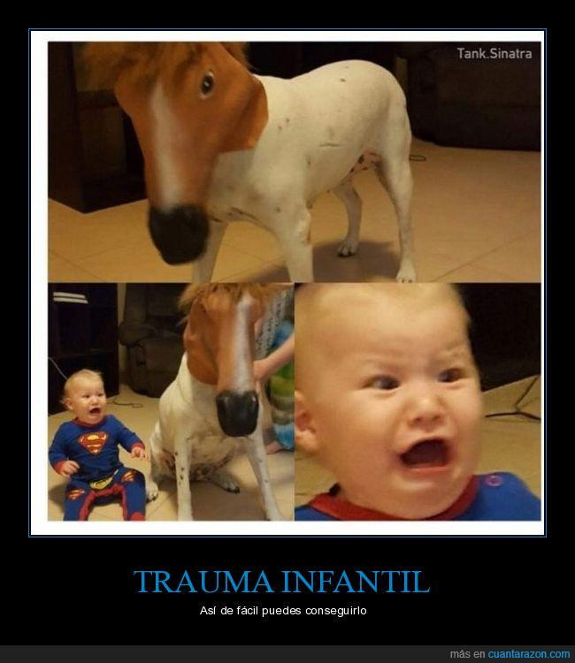 caballo,mascara,niño,perro,trauma