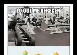 Enlace a No haría ejercicio igualmente