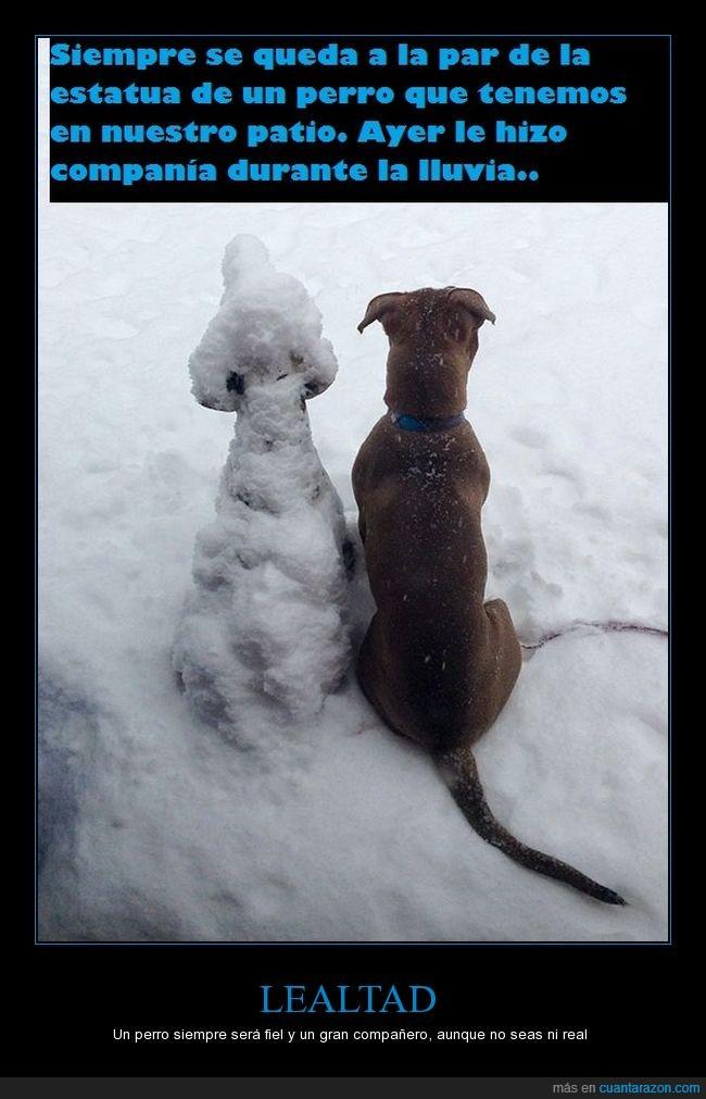cuidar,estatua,nieve,perros