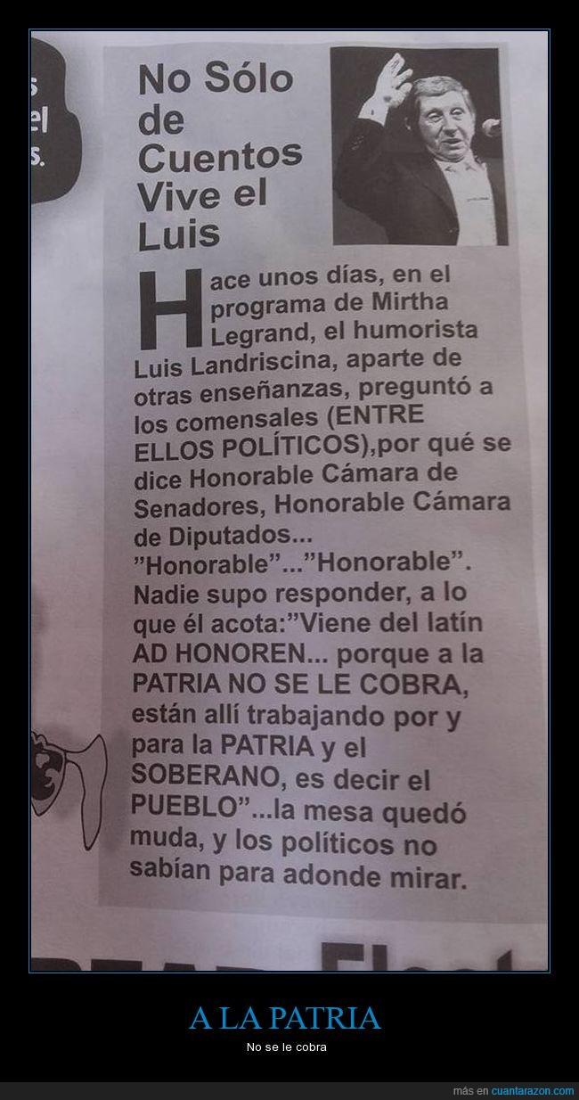 Ad Honorem,Argentina,Diptados,Landriscina,Senadores
