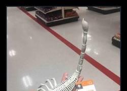 Enlace a Claro que sí, esqueleto de escorpión
