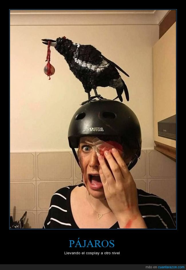 casco,cosplay,ojo,pájaros
