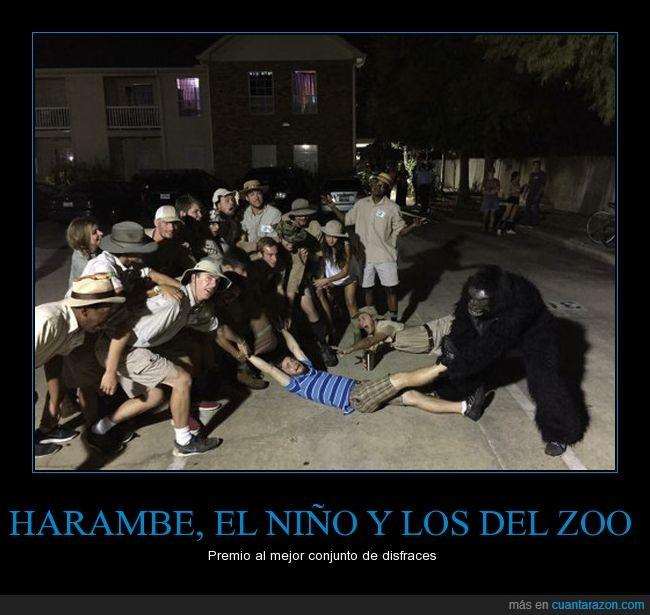 gorila,harambe,niño suicida,representación,zoo