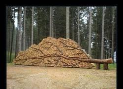 Enlace a El arte de cortar y apilar troncos