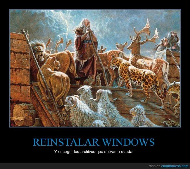 arca de noé,archivos,escoger,reinstalar,windows