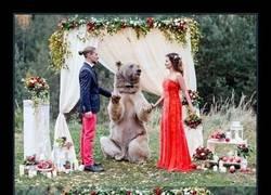 Enlace a La típica boda rusa donde te casa un oso de 500kg