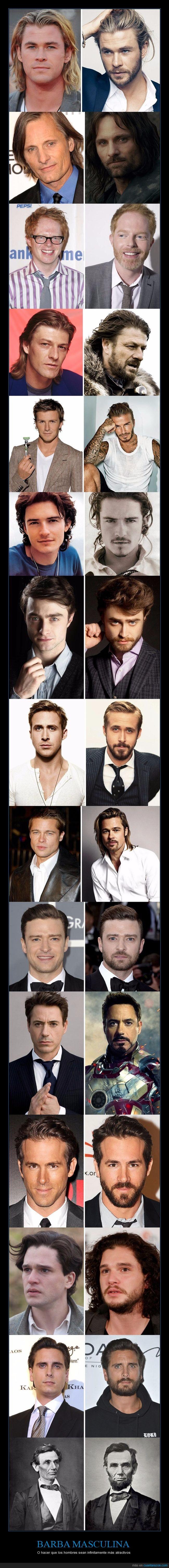 atractivos,barbas,hombres,vello facial