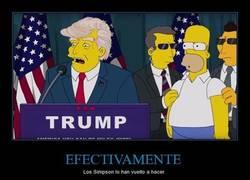 Enlace a Donald Trump, presidente de EEUU